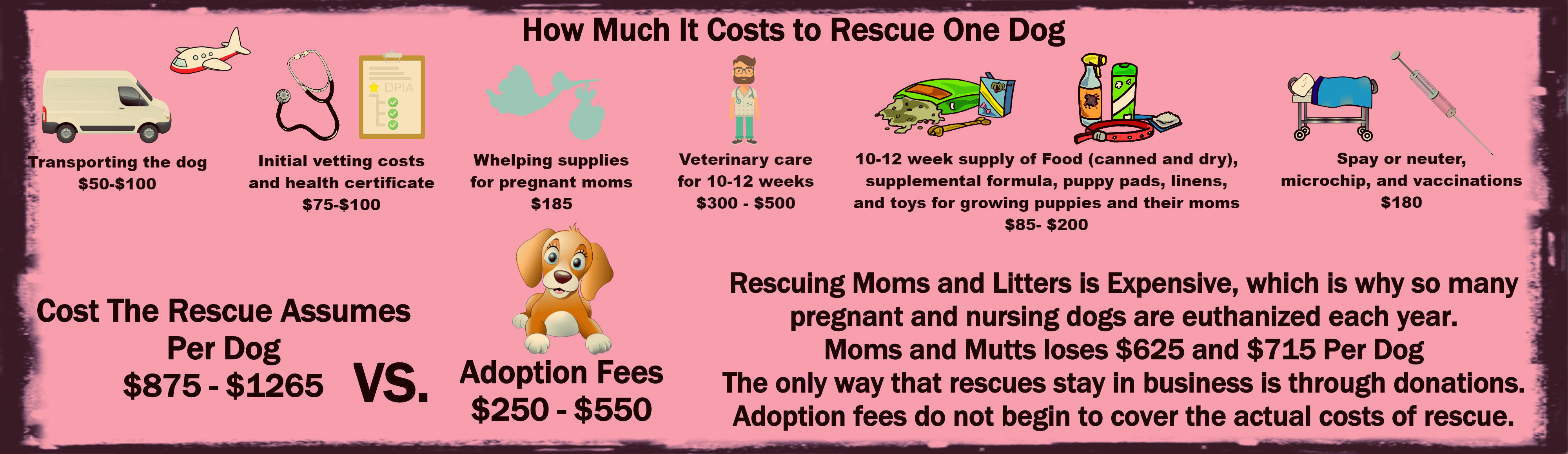 Mamcorescue moms and mutts colorado rescue for pregnant mamcorescue moms and mutts colorado rescue for pregnant and nursing dogs xflitez Gallery